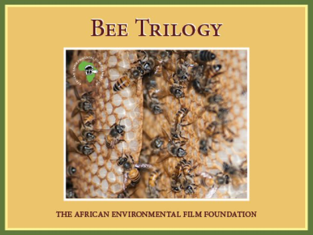 Bee Trilogy Film by AEFF